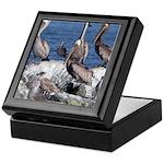 Pelicans on Rock Keepsake Box