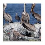 Pelicans on Rock Tile Coaster