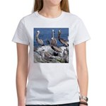 Pelicans on Rock T-Shirt