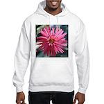 Indian Pink Sweatshirt