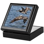 Pelicans in Flight Keepsake Box