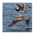 Pelicans in Flight Tile Coaster