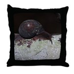 Pacific Sideband Snail Throw Pillow