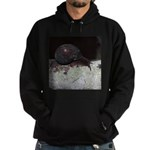 Pacific Sideband Snail Sweatshirt