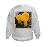Orange Peel Fungi with Stalk Sweatshirt
