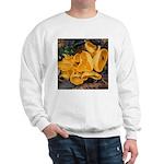 Orange Peel Fungi Sweatshirt