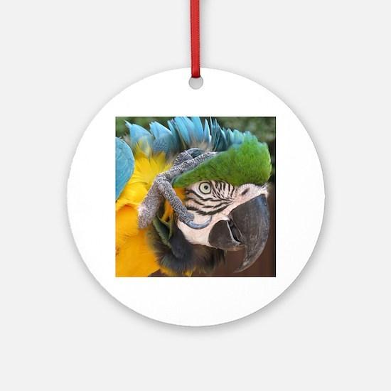 Unique Macaw Round Ornament