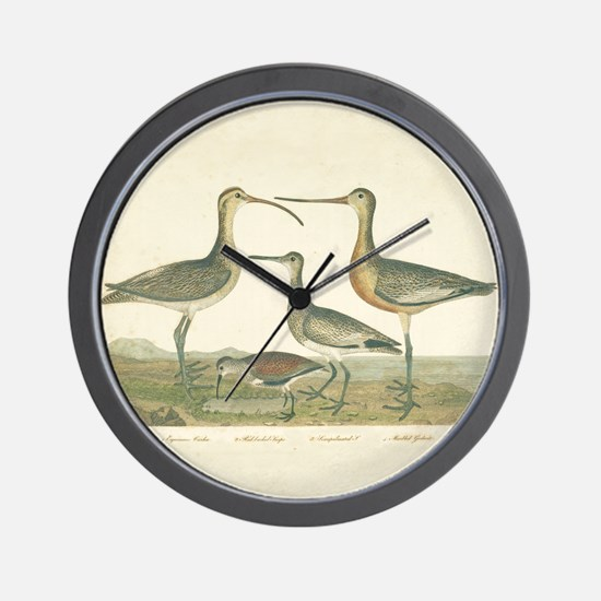 Antique Birds Coastal Marsh Wall Clock