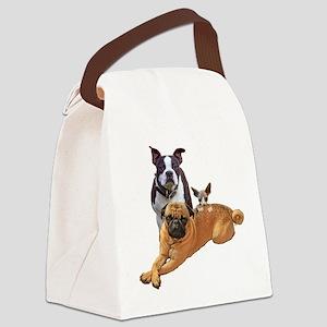 Pug Boston terrier cat Canvas Lunch Bag