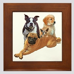 Dog posse with a hairless cat Framed Tile