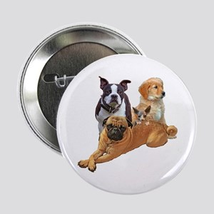 """Dog posse with a hairless cat 2.25"""" Button"""