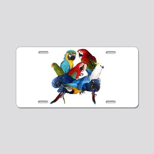 Parrots Aluminum License Plate