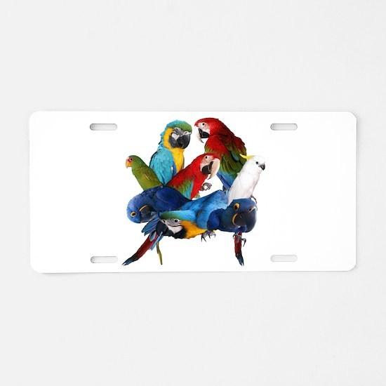 Parrots Aluminum License Plate
