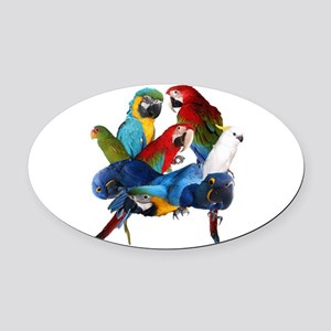 Parrots Oval Car Magnet