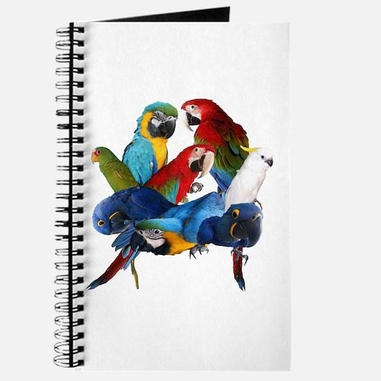 Parrots Journal