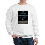 How Important Are We? Sweatshirt
