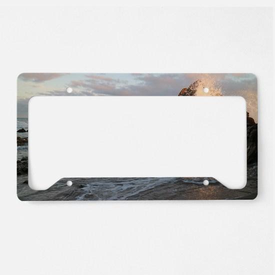 Unique Newport beach License Plate Holder