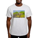 p2501. nauset  Ash Grey T-Shirt