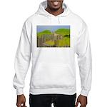 p2501. nauset Hooded Sweatshirt
