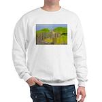 p2501. nauset  Sweatshirt