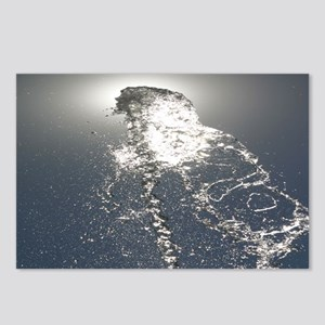 p0120. water face.. Postcards (Package of 8)