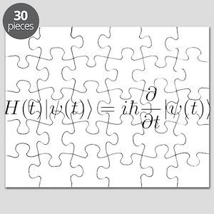 Schro Puzzle