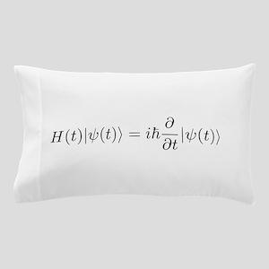 Schro Pillow Case