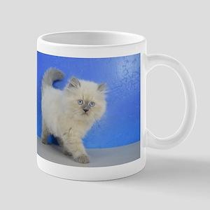 Cleopatra - Ragamuffin Kitten Blue Point Mugs