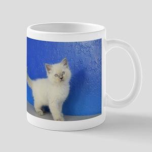 Janie - Ragdoll Kitten Blue Point Mugs