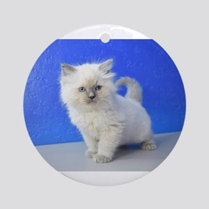 Kissy - Ragdoll Kitten Blue Point Round Ornament