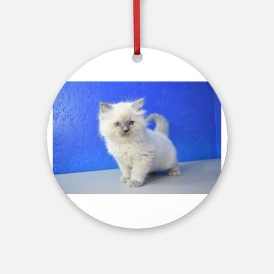 Kissy - Ragdoll Kitten Blue Point Round Ornament