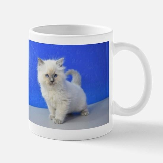 Kissy - Ragdoll Kitten Blue Point Mugs
