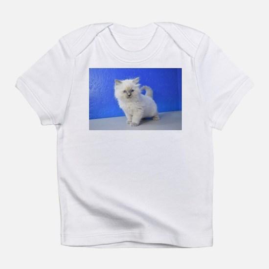 Kissy - Ragdoll Kitten Blue Point T-Shirt