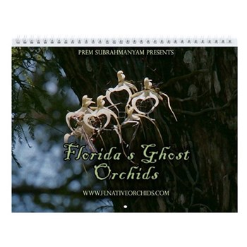 Florida Ghost Orchid Wall Calendar