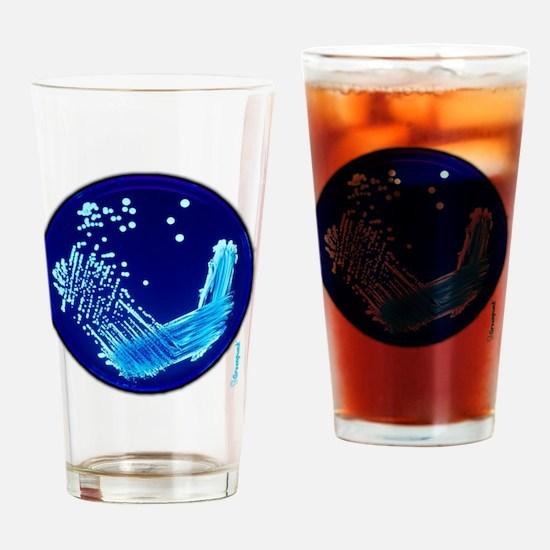 Funny Petri Drinking Glass