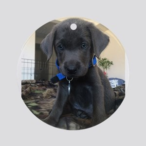 Charcoal labrador case Round Ornament