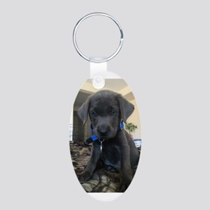 Charcoal labrador case Keychains