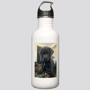 Charcoal labrador case Water Bottle