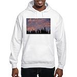 p0147. fur, oregon Hooded Sweatshirt
