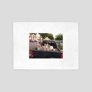 Siberian huskies in pickup truck in 5'x7'Area Rug