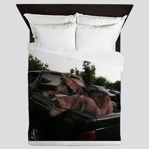 Siberian huskies in green Dodge pickup Queen Duvet