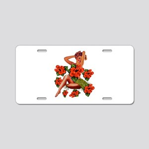 ISLANDS Aluminum License Plate