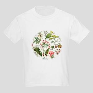 Botanical Illustrations - Larousse P T-Shirt