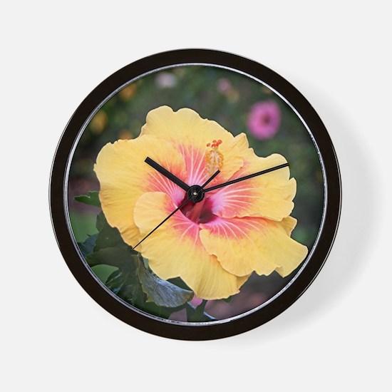 Pink yellow hibiscus flower Wall Clock