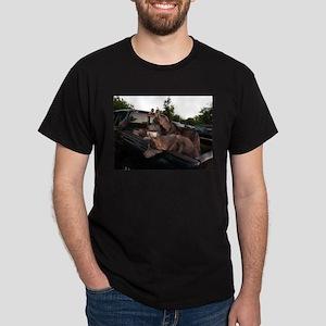 Siberian huskies in green Dodge pickup tru T-Shirt