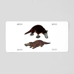 PLAYFUL Aluminum License Plate
