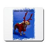 bring him home santa Mousepad