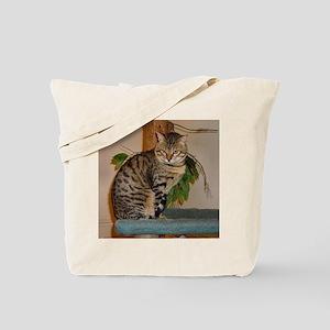 egyptian mau sitting 2 Tote Bag