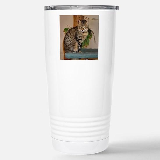 egyptian mau sitting 2 Travel Mug