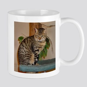 egyptian mau sitting 2 Mugs